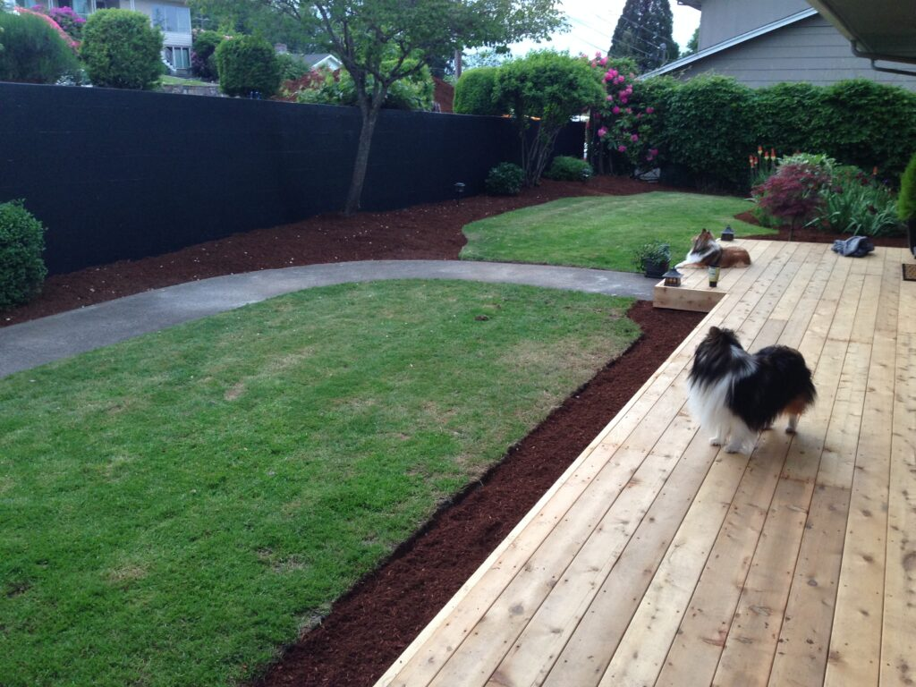 Dogs standing and resting on a backyard's wooden deck